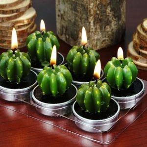 72 Cactus Succulent tea light candles party favor